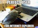 Użytkownik IE